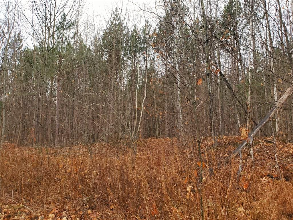 On Sorenson Road, Port Wing, WI 54865 - Port Wing, WI real estate listing