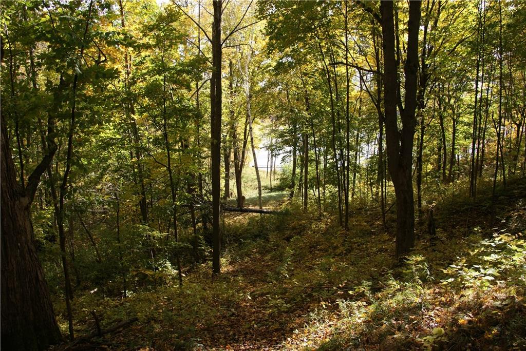Lot 1 Cty I Property Photo - Tony, WI real estate listing