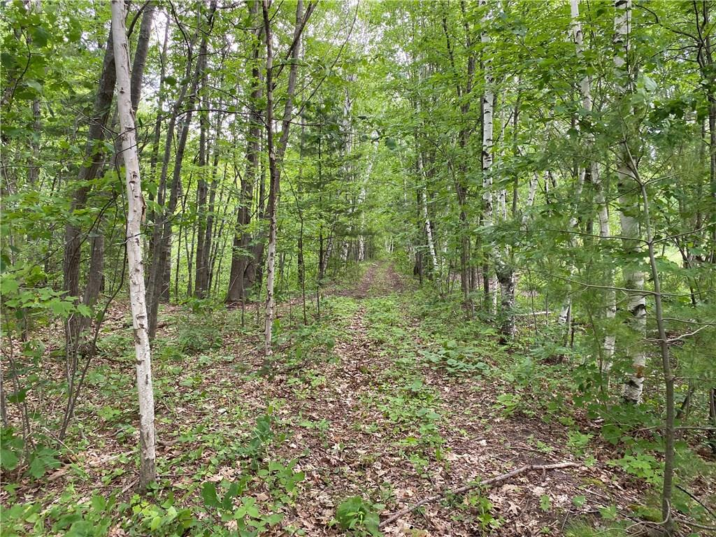 x Hwy 63 North Property Photo - Barronett, WI real estate listing