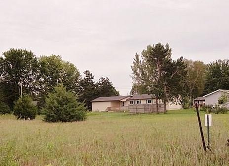 0 Cedar Drive Property Photo - Pepin, WI real estate listing