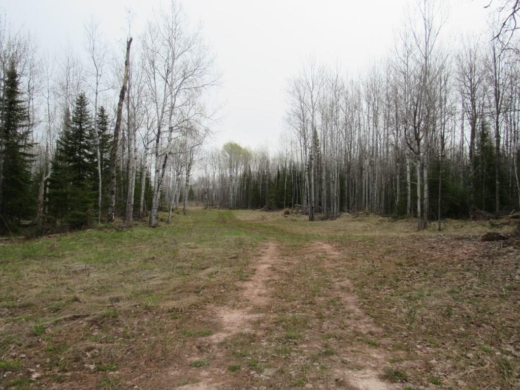 0 Swedlund Road Road Property Photo - Herbster, WI real estate listing