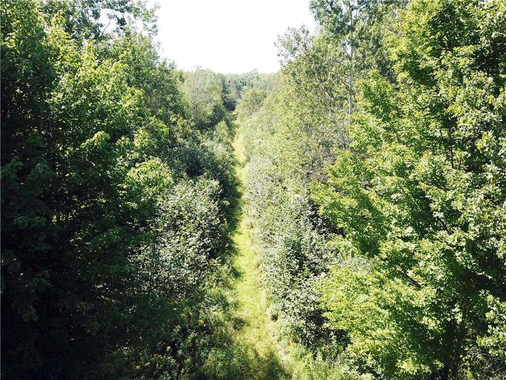 40 Acres via Easement off Cty. Rd. B Property Photo - Glen Flora, WI real estate listing