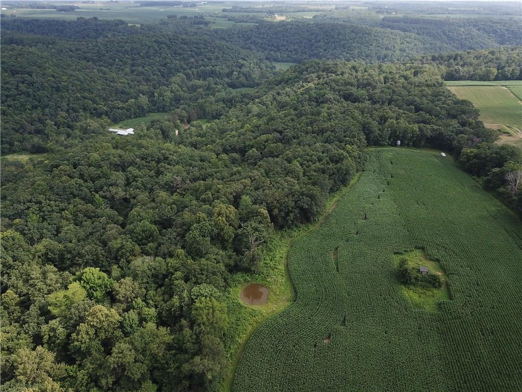 60 acres 200th Property Photo - Maiden Rock, WI real estate listing