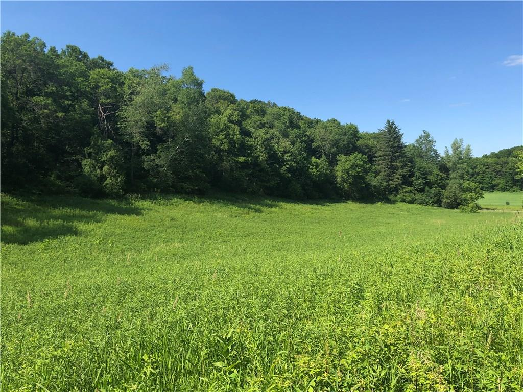 N32383 Larkin Valley Road Property Photo - Blair, WI real estate listing