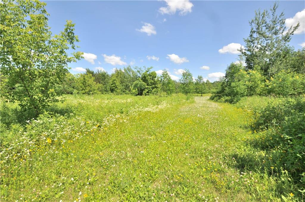 Lot 7 305th Avenue Property Photo - Holcombe, WI real estate listing