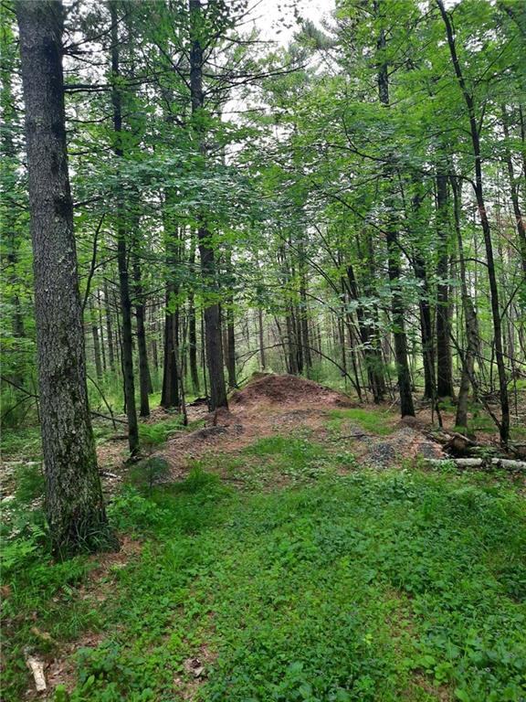 .98 Acres Fawn Lane Property Photo - Hatfield, WI real estate listing