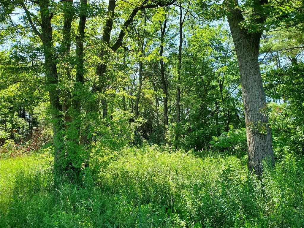 N9550 S Alma Road Property Photo - Alma Center, WI real estate listing