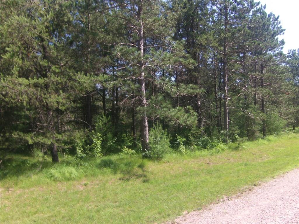 Lot 9 Dickerson Avenue Property Photo - Willard, WI real estate listing