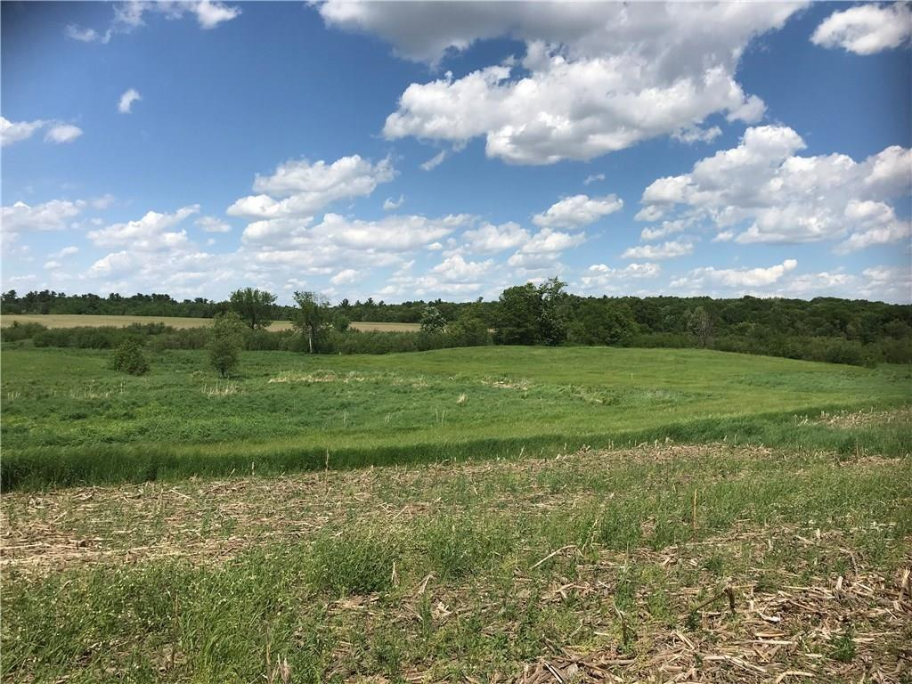 Lot 1 765th Street Property Photo - Elk Mound, WI real estate listing