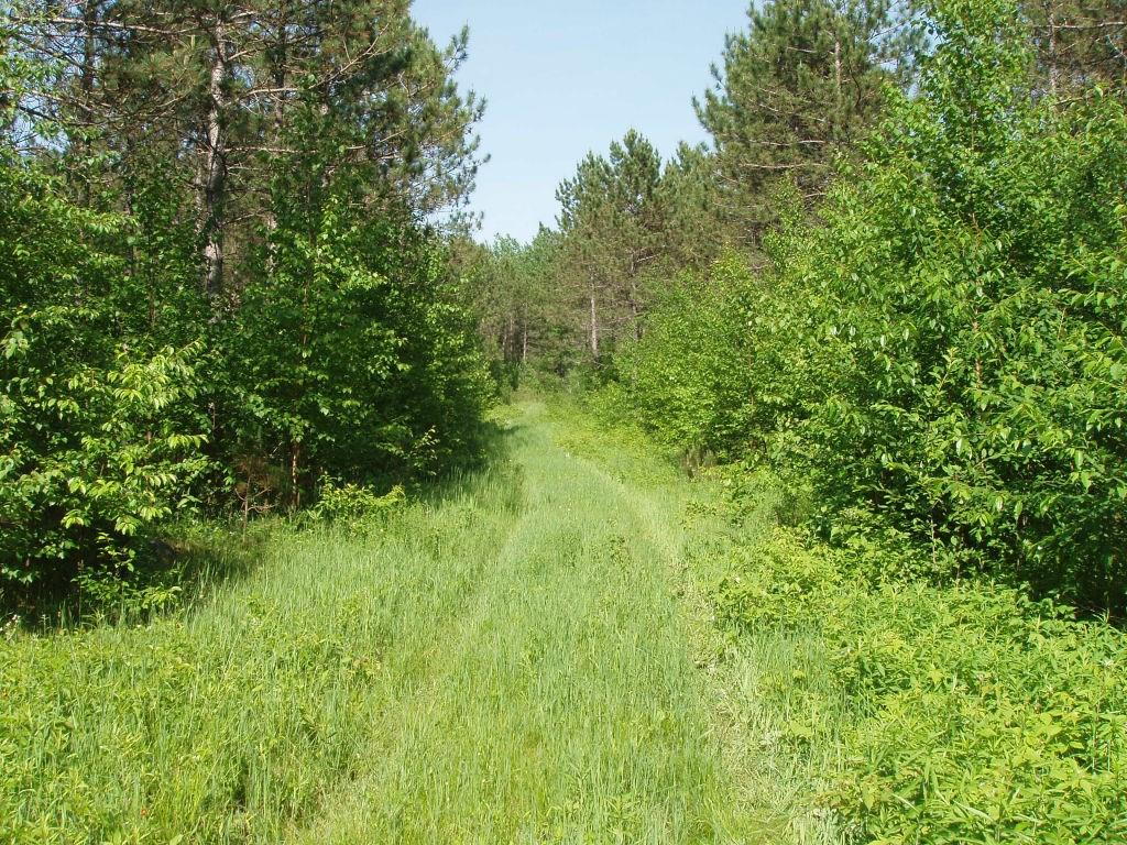 On Sugar Bush Rd Property Photo - Park Falls, WI real estate listing