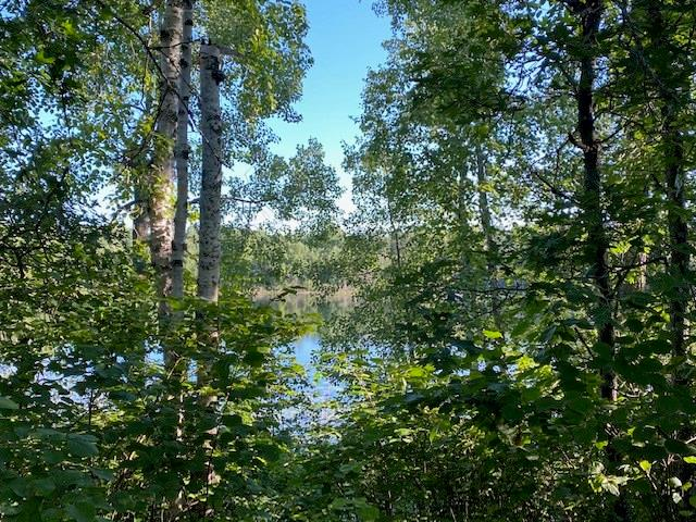 2510 Bony Lake Road Property Photo