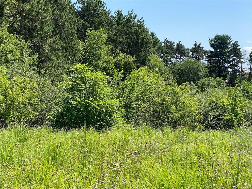 0 Hwy 85 Property Photo - Durand, WI real estate listing