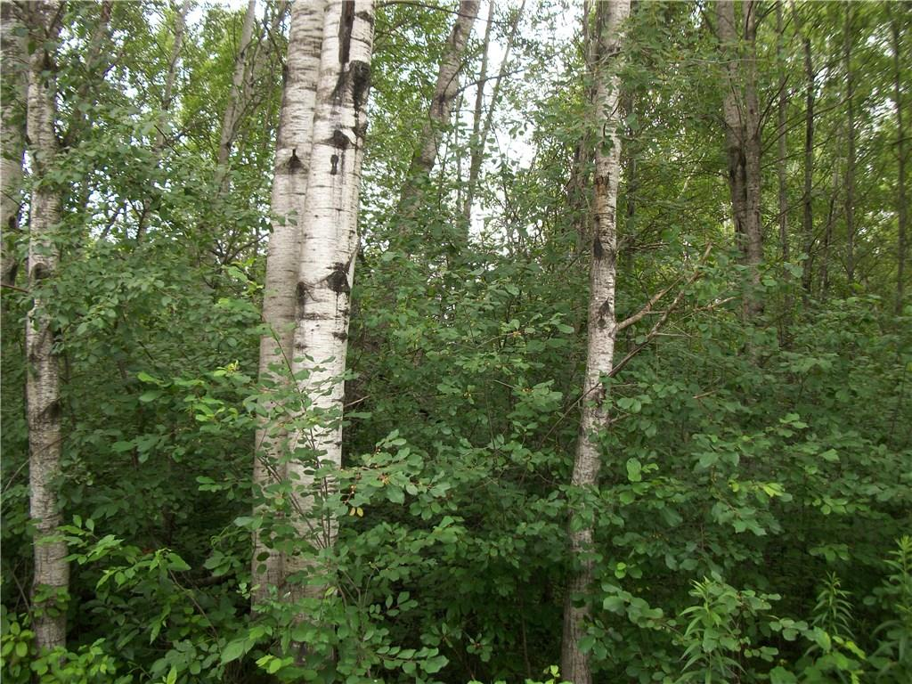 Lot #70 Bayfield/29 7/8 AVE Property Photo - Birchwood, WI real estate listing