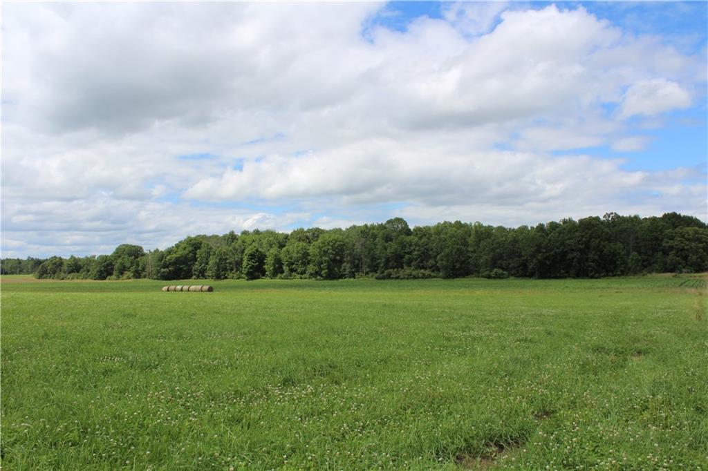N2475 Robin Property Photo