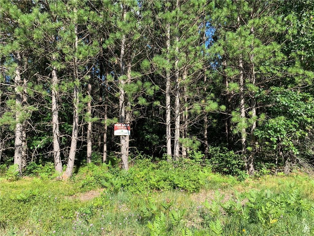 ON Ostergren Road Property Photo - Webster, WI real estate listing