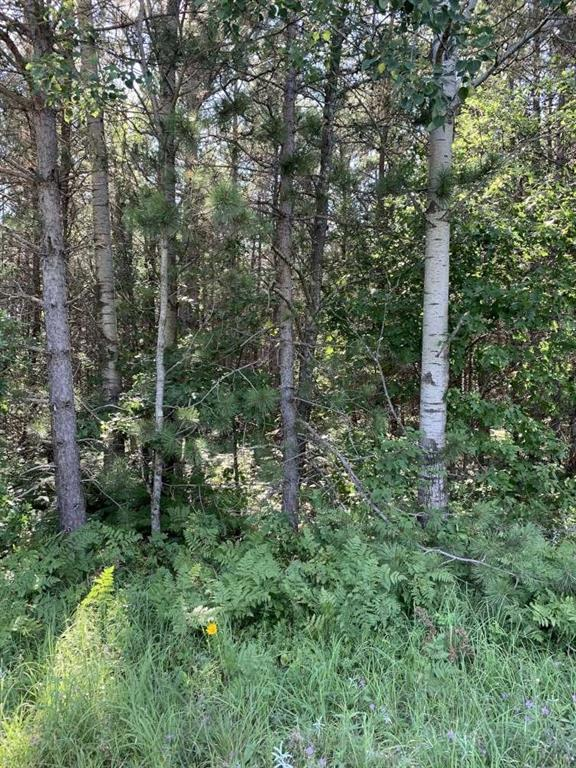 NEAR Seven Mile Road Property Photo - Herbster, WI real estate listing