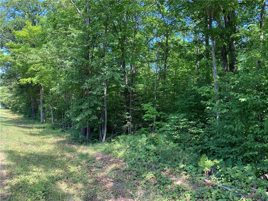 ON Peterson Hill Road Property Photo - Bayfield, WI real estate listing