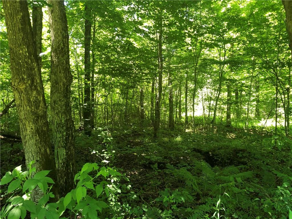 0 Hunters Lane Property Photo - Jump River, WI real estate listing