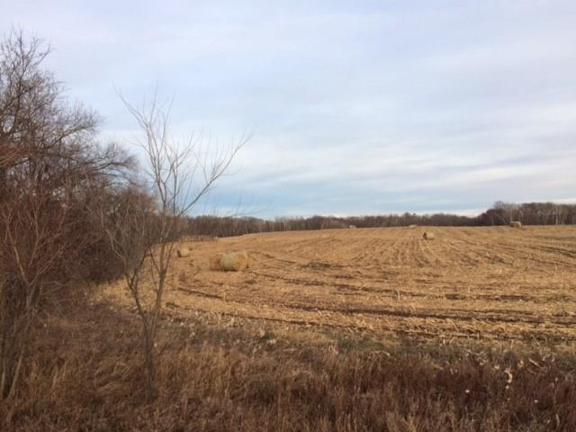 Lot 11 57th Avenue Property Photo - Osceola, WI real estate listing