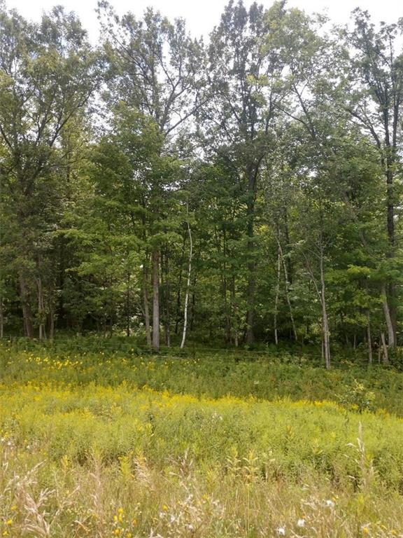 117 acres MM Highway Property Photo - Cadott, WI real estate listing
