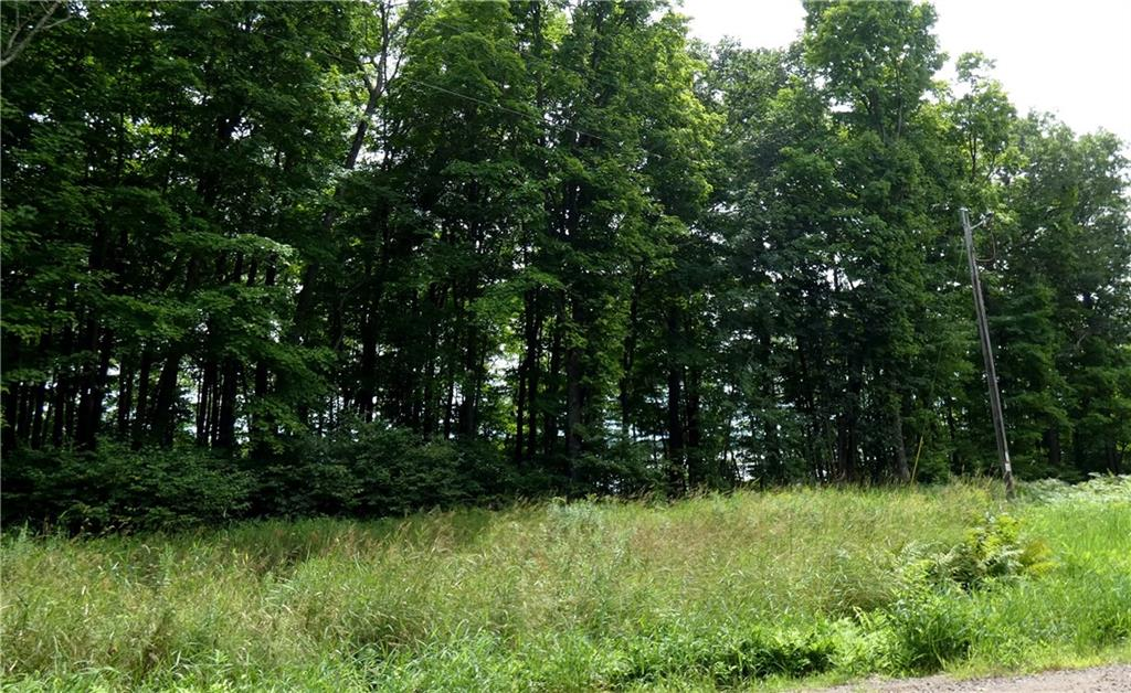 Lot #1 Bear Landing Road Property Photo - Sarona, WI real estate listing