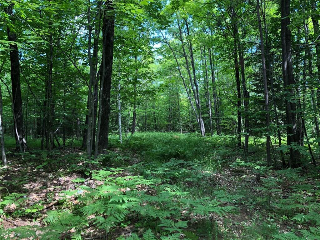 84915 Old 13 Road Property Photo - Port Wing, WI real estate listing