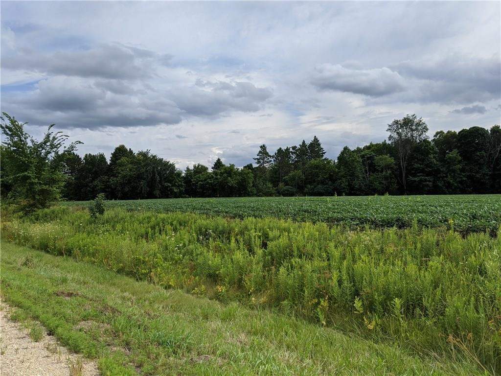 xxx HWY 65 Property Photo - River Falls, WI real estate listing