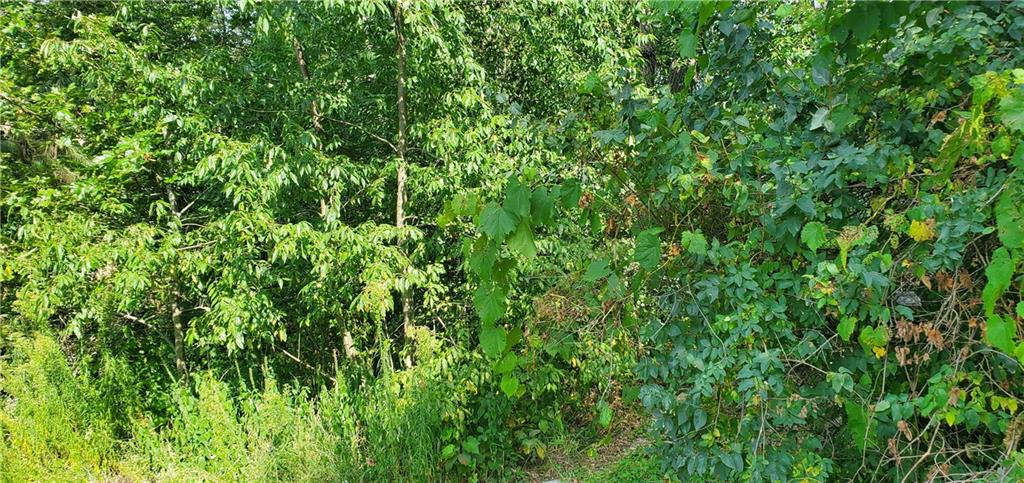 0 County Rd XX Property Photo - Alma, WI real estate listing