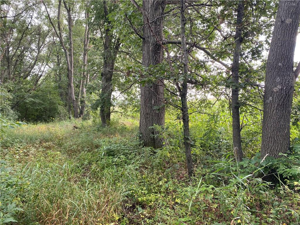 0 Maple Road Property Photo - Eau Claire, WI real estate listing