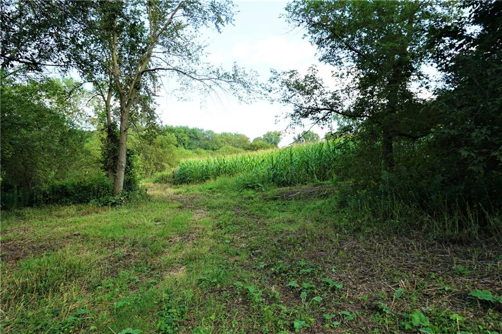 50 Acres Highway 10 Property Photo - Plum City, WI real estate listing