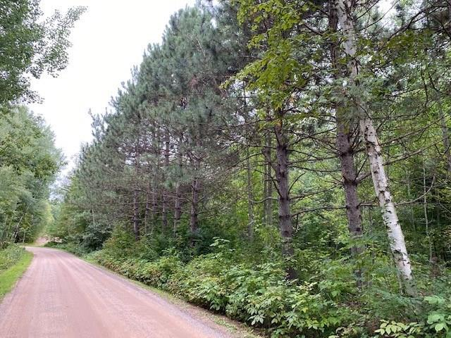 XX Cty Hwy B Property Photo - Shell Lake, WI real estate listing
