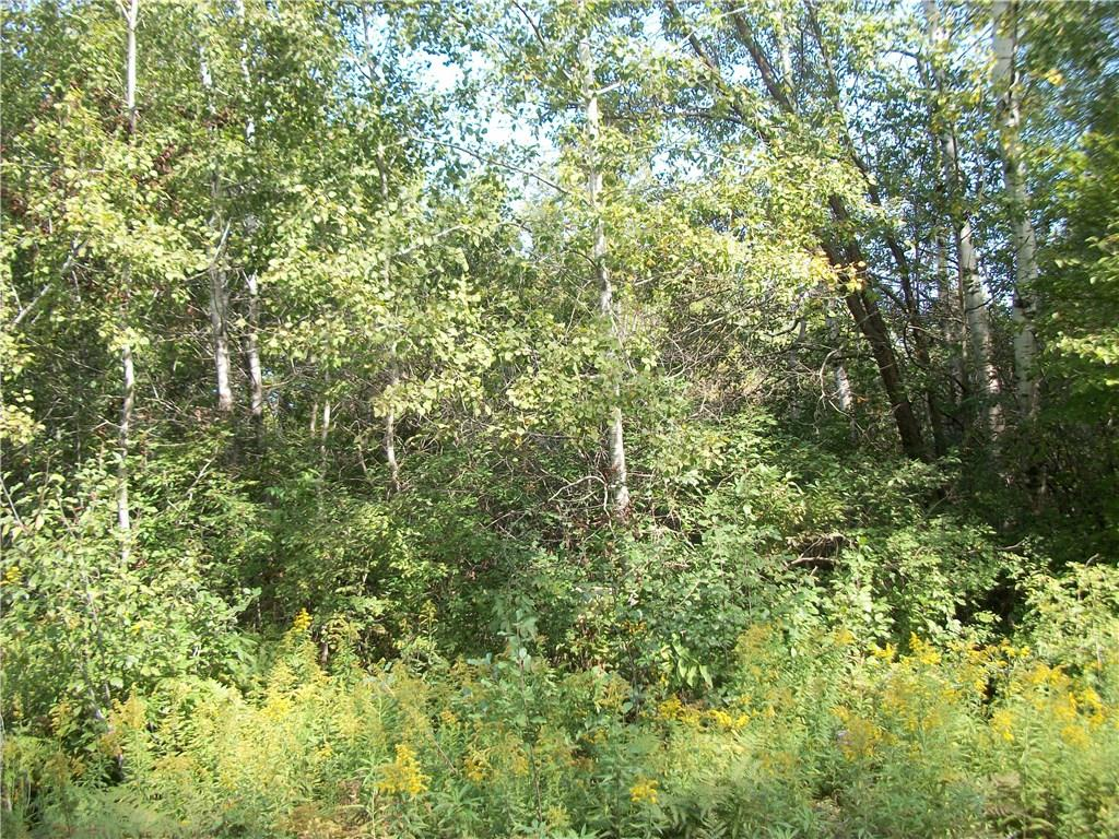 Lot #91 Bayfield/29 7/8 AVE Way Property Photo - Birchwood, WI real estate listing