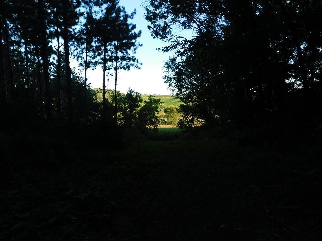 0 Mallard Road Property Photo 3