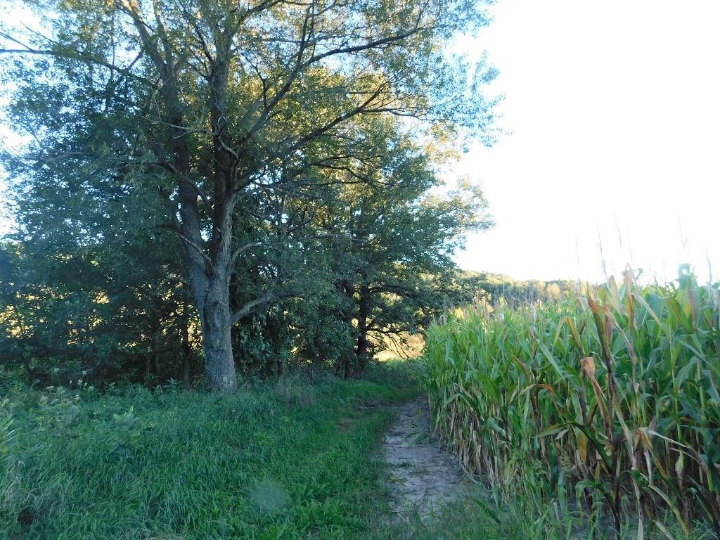0 Mallard Road Property Photo 4
