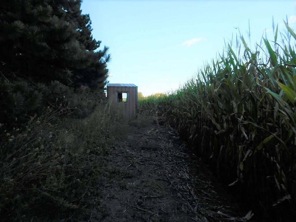 0 Mallard Road Property Photo 5