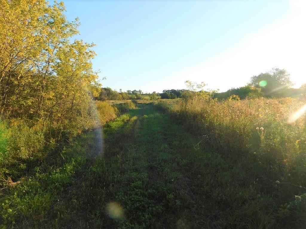 0 Mallard Road Property Photo 8