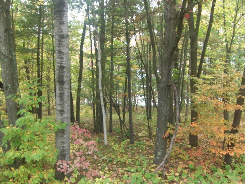 Lot 267th Property Photo - Holcombe, WI real estate listing