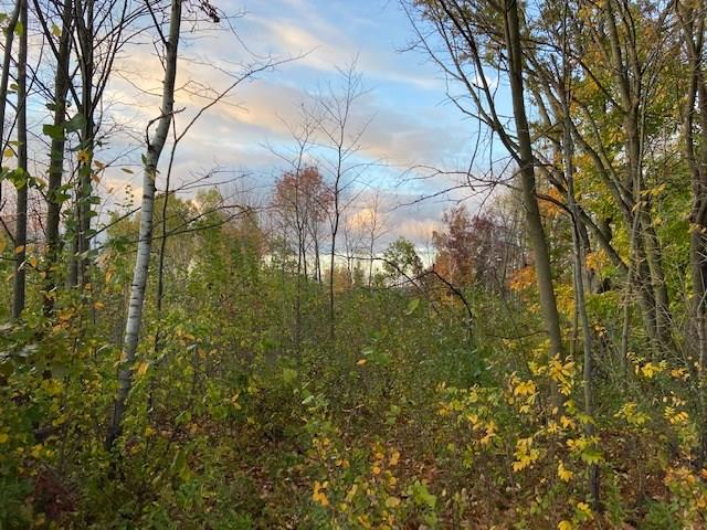 Lot 1 170th Avenue Property Photo - Glenwood, WI real estate listing