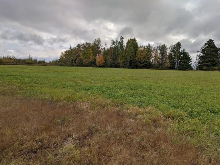 22 Acres County I Property Photo - Tony, WI real estate listing