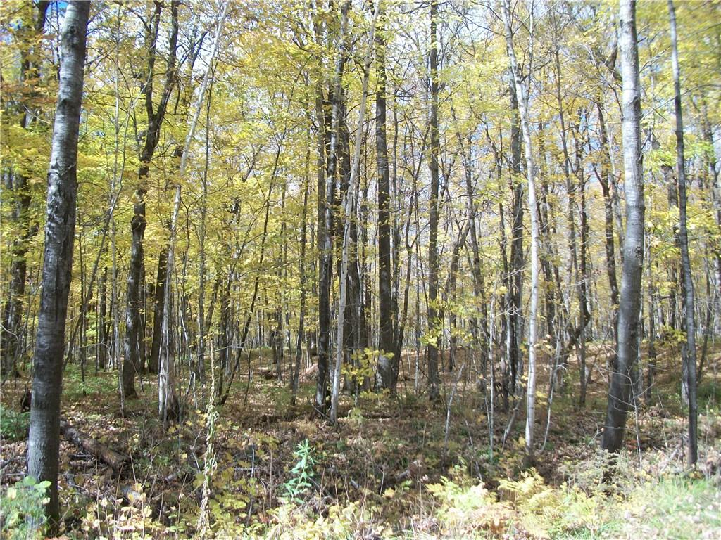 Lot #47 Sunrise Drive Property Photo - Birchwood, WI real estate listing