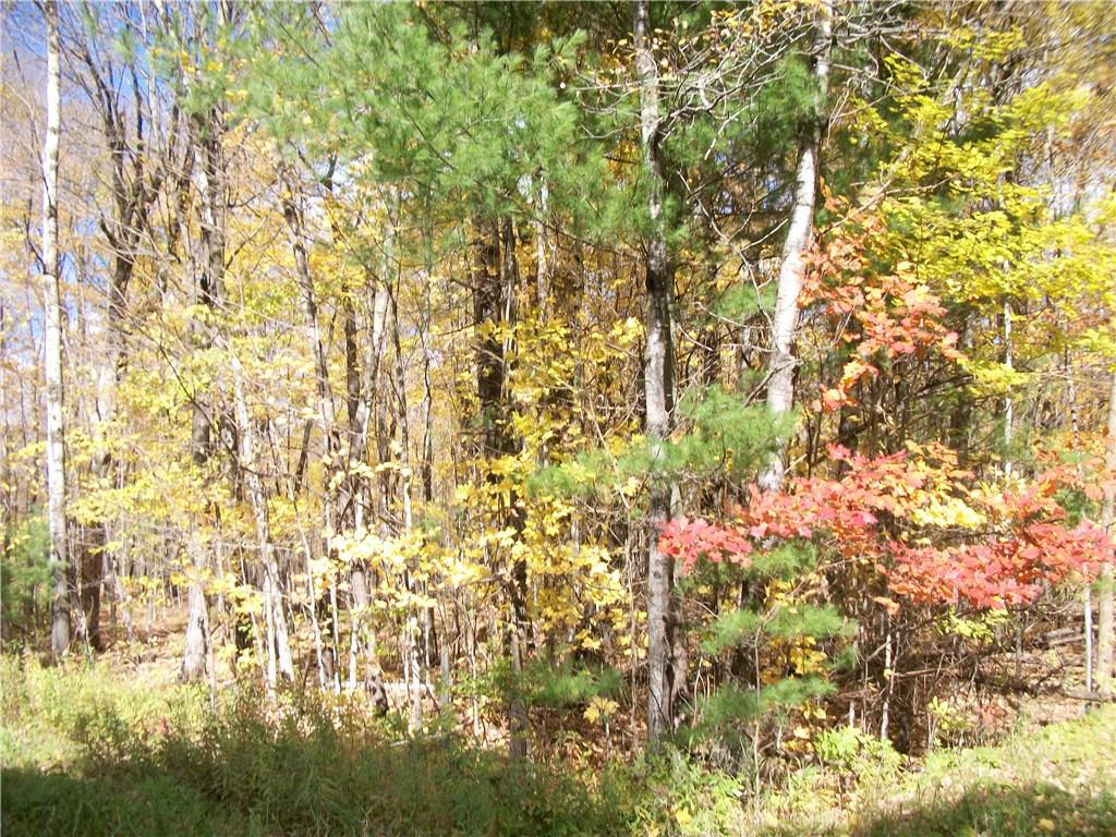 Lot #51 Chippewa Place Property Photo - Birchwood, WI real estate listing
