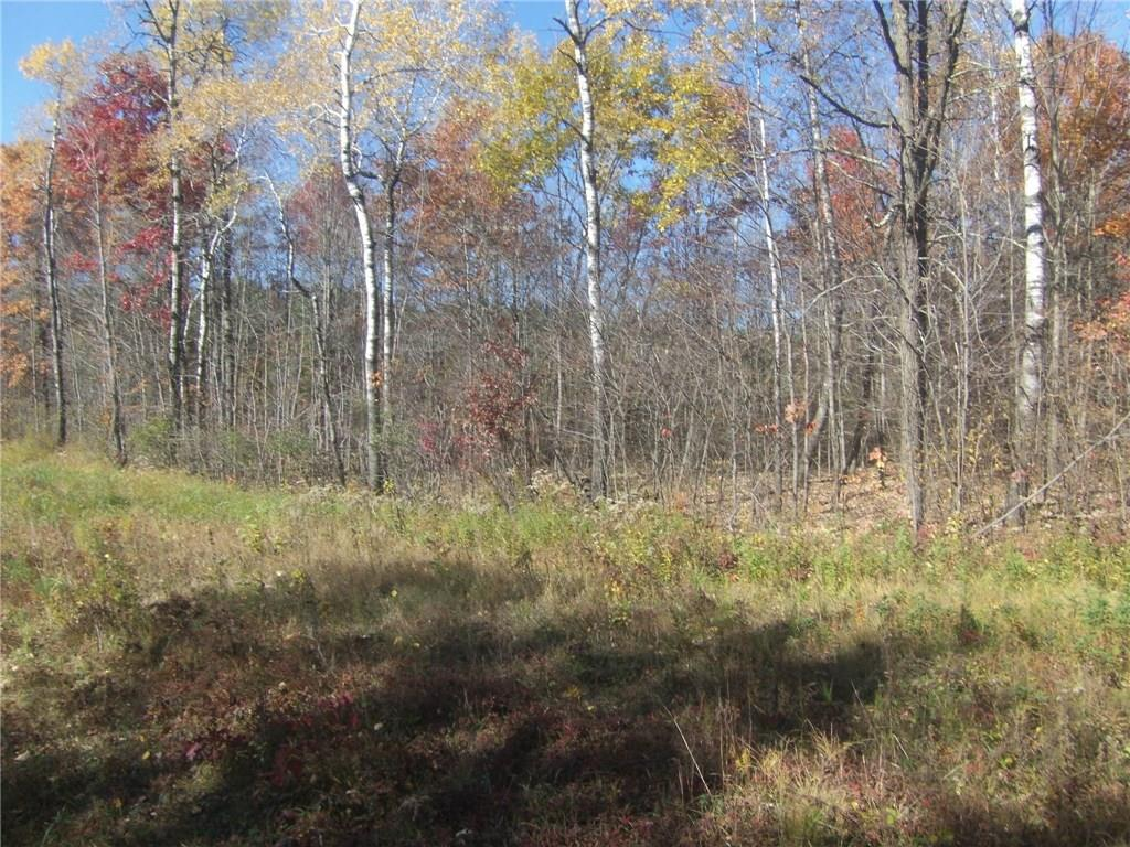 10 Acres River Road Property Photo - Bruce, WI real estate listing