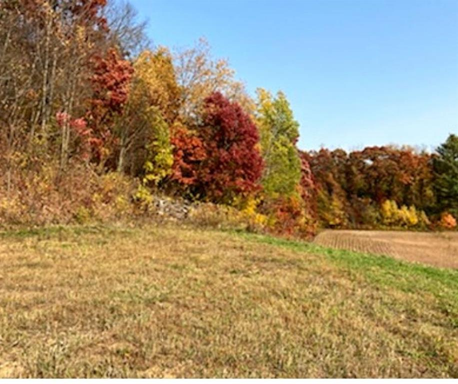 XXXX Otter Creek Rd Property Photo - Fall Creek, WI real estate listing