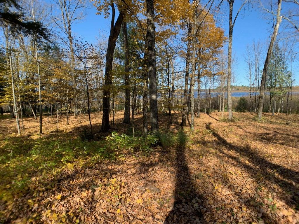 Lot 2 CTH FF Property Photo - Mercer, WI real estate listing