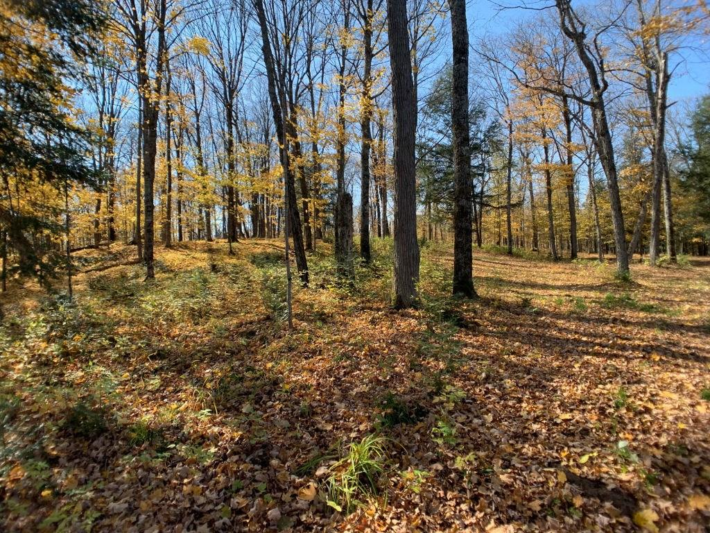Lot 3 CTH FF Property Photo - Mercer, WI real estate listing