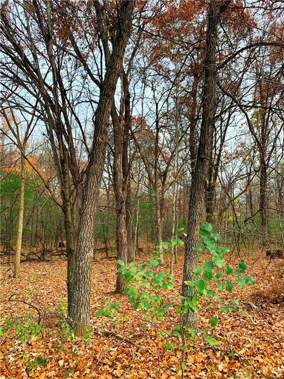 Lot 01 30th Street Property Photo - Elk Mound, WI real estate listing