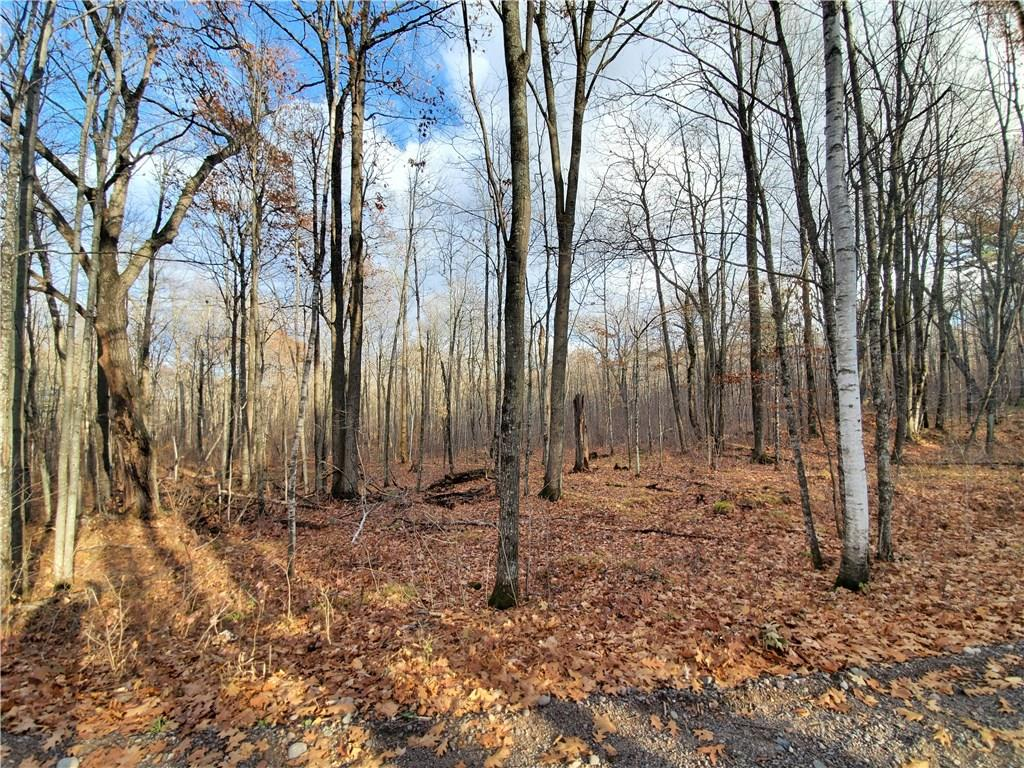 Lot 4 2.82 Acres Property Photo - Couderay, WI real estate listing