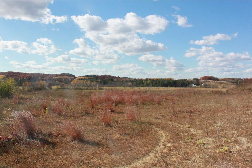 Lot 1 970th Avenue Property Photo - Boyceville, WI real estate listing