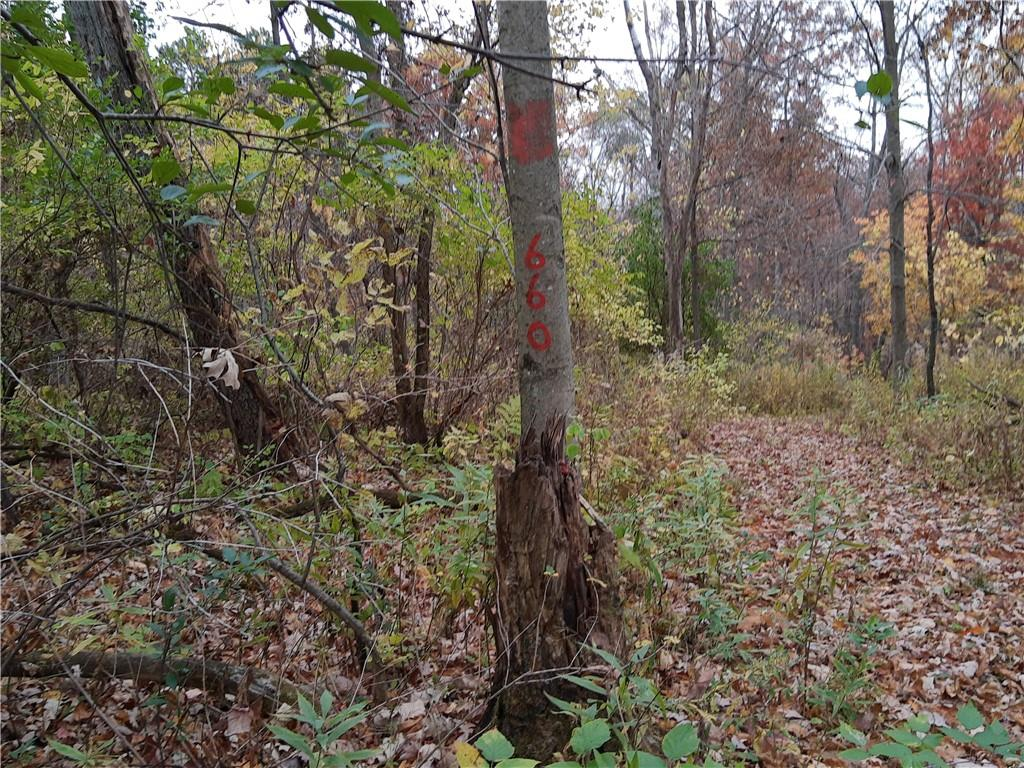 0 Hwy CC Property Photo - Pepin, WI real estate listing