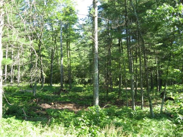 Lot 4 Deer Lane Property Photo